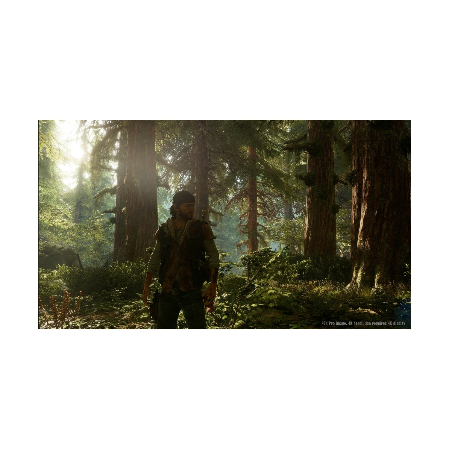 Gra PS4 Days Gone